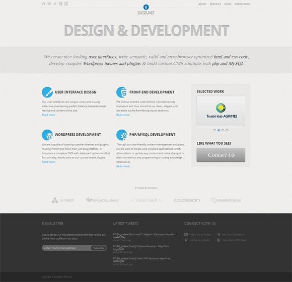 EUtelNet Design and Development